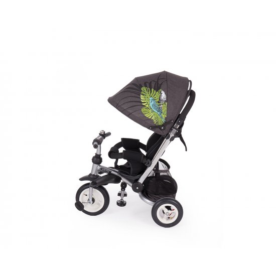 Триколка Vetta Parrots Air wheels